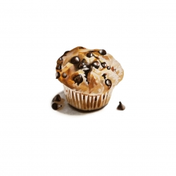 Erin Rothstein - Tasting Room: Chocolate Chip Muffin