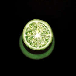 Erin Rothstein - Tasting Room: Lime