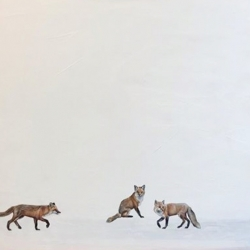 Heather  Cook  - Fox