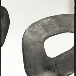 Meret  Roy  - Thick Ring