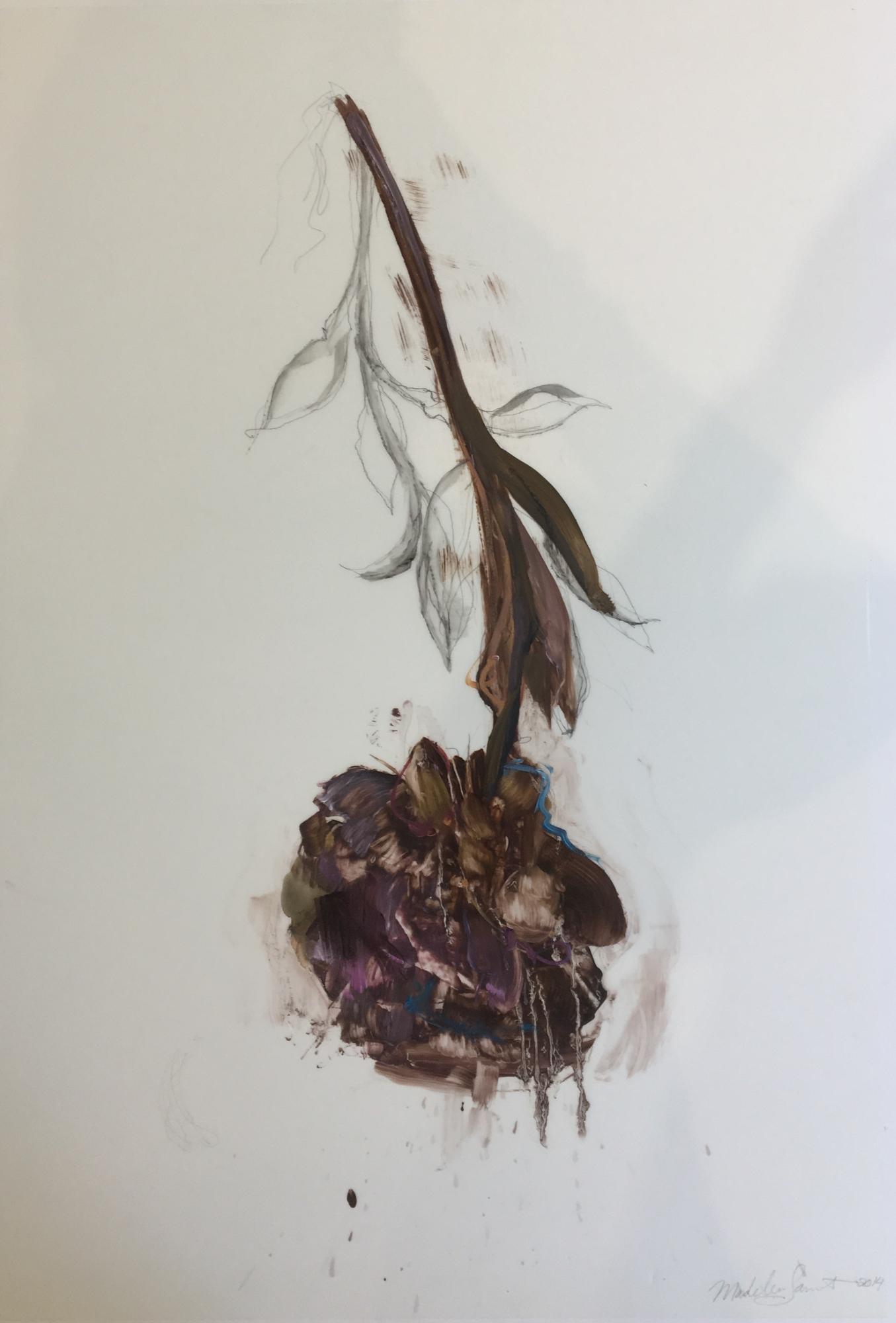 Purple Peony 2014  by Madeleine Lamont