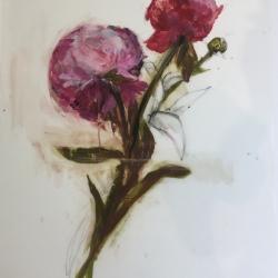 Madeleine Lamont