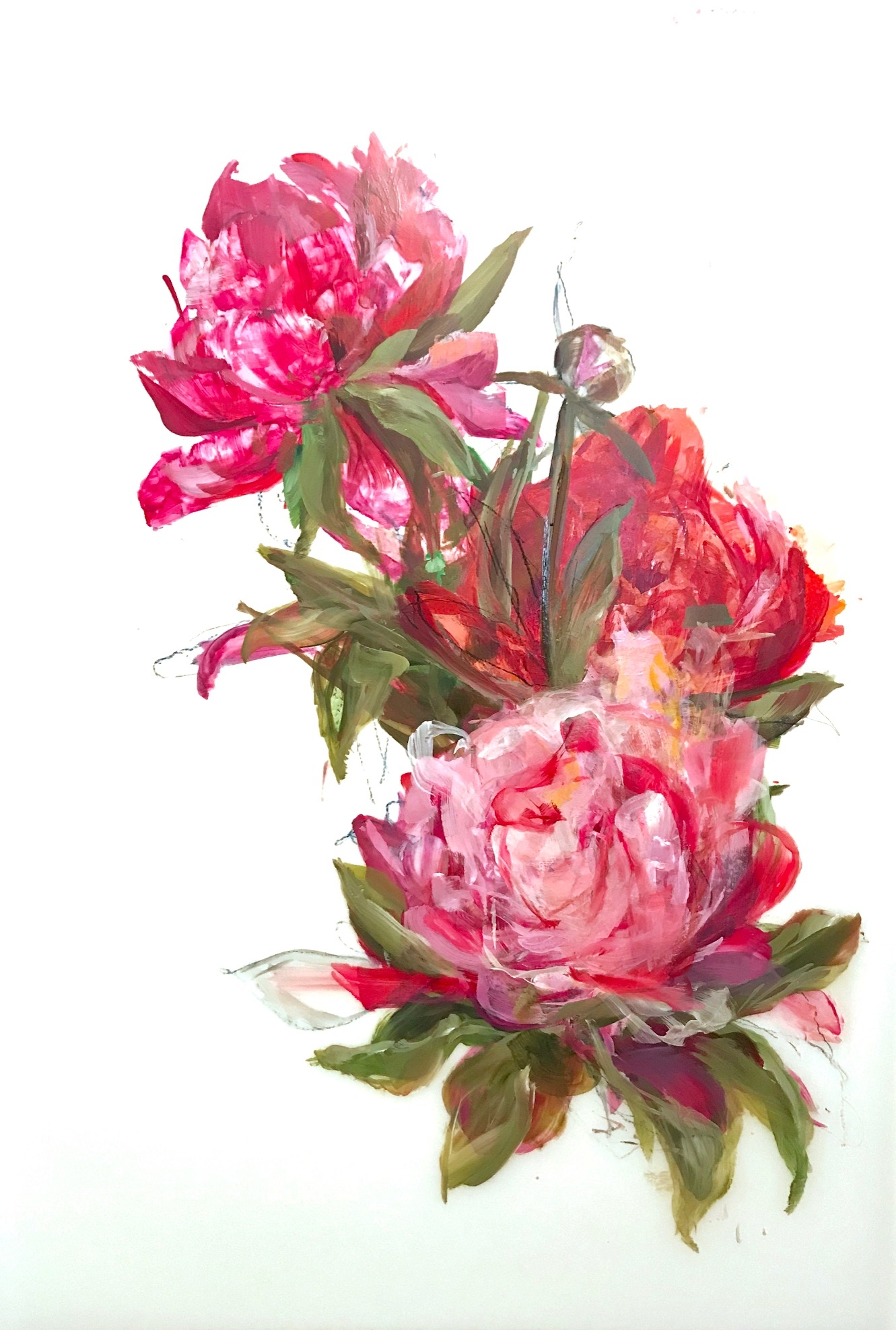 Magenta Peonies 3 by Madeleine Lamont