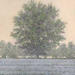 Richard Herman - Misty Tree #2