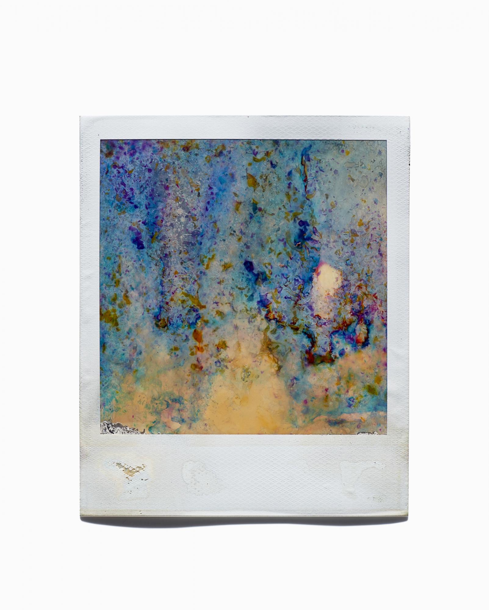 Monet's Garden by Rob Kinghorn