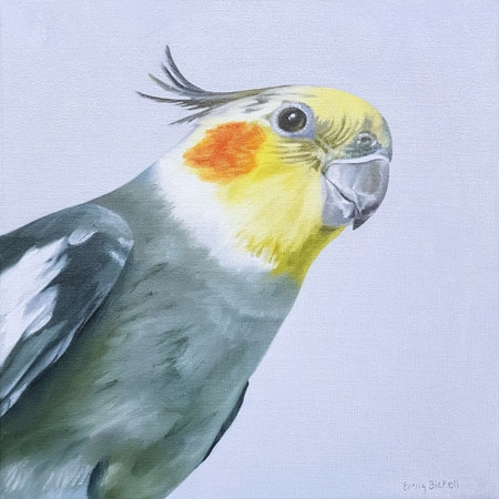 Cockatiel by Emily Bickell