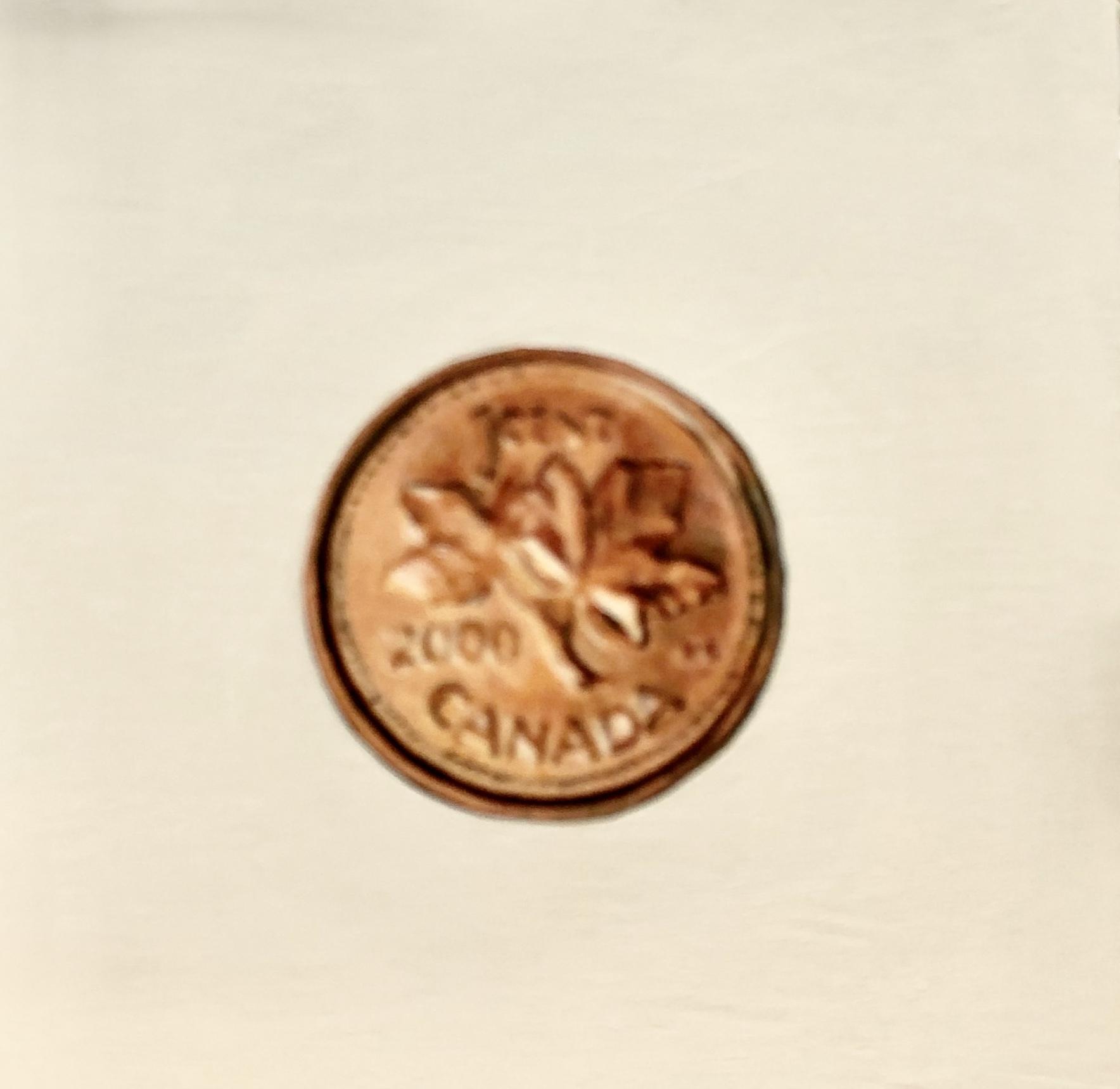 Penny 2000 by EM Vincent