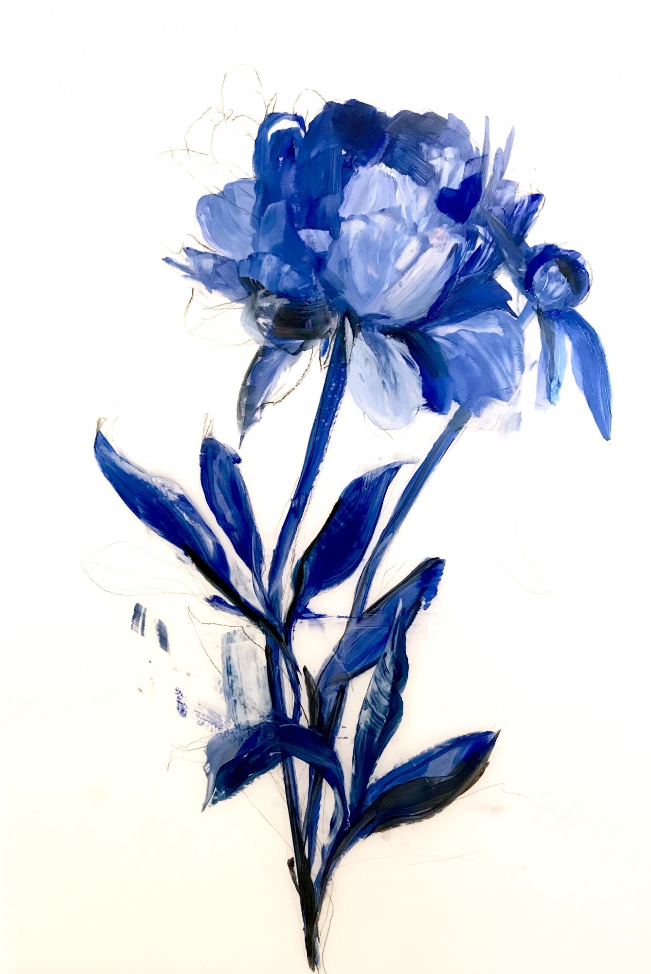 Deep Blue Peony 2 by Madeleine Lamont