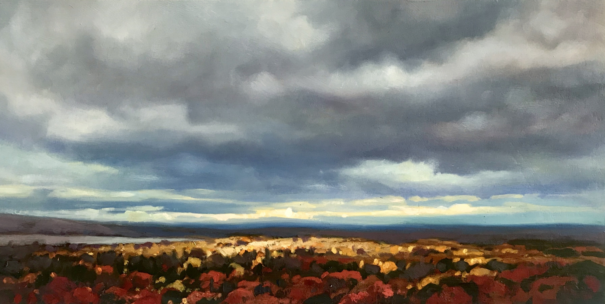 Algonquin Aglow  by Elzbieta Krawecka