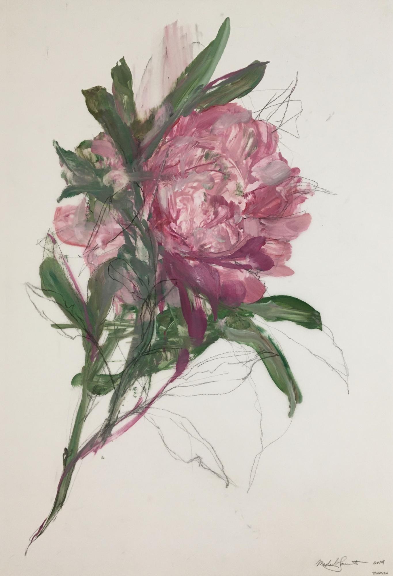 Pink Ladies 2020 - 2 by Madeleine Lamont