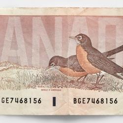 Peter Andrew - 2 Dollar Bill