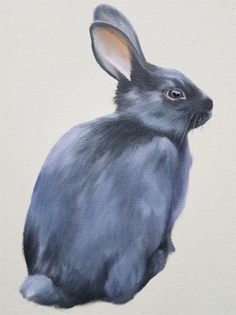 Black Rabbit  by Emily Bickell