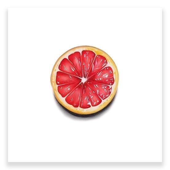 Tasting Room: Grapefruit  by Erin Rothstein