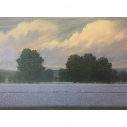 Richard Herman - Open Fields with Evening Light