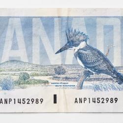 Peter Andrew - 5 Dollar Bill