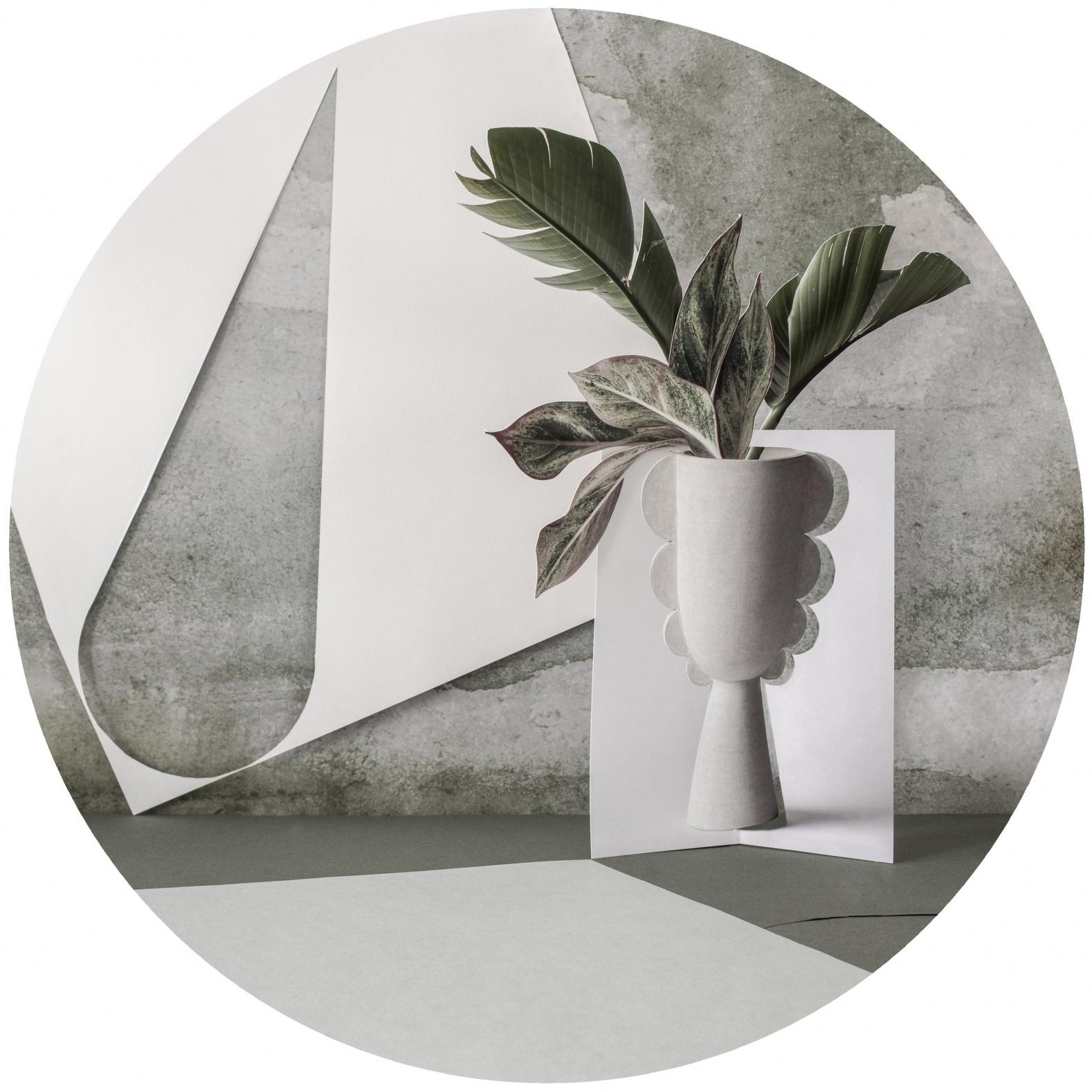 Paper Cuts: Dusk  by Anna Church