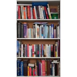 Tek Yang - Bookshelves-HEB I