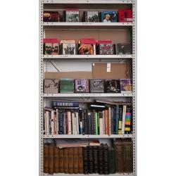 Tek Yang - Bookshelves-JB
