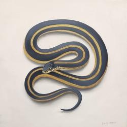 Emily Bickell - Garter Snake