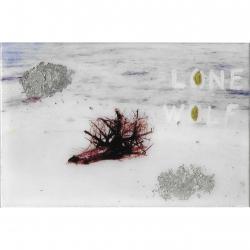 Talia Shipman - Lone Wolf