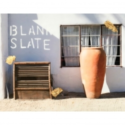 Talia Shipman - Blank Slate