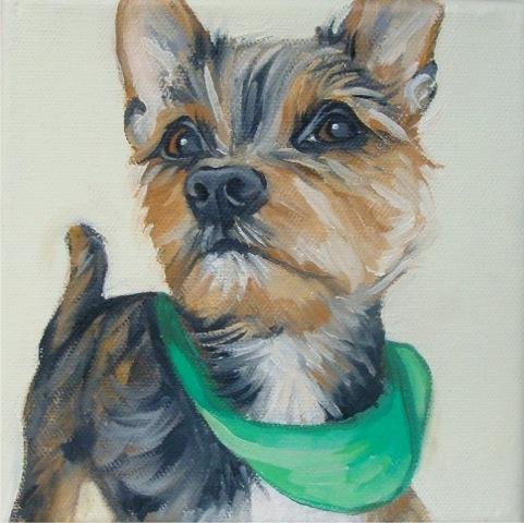Yorkie in Green Scarf by Jennifer Wigmore