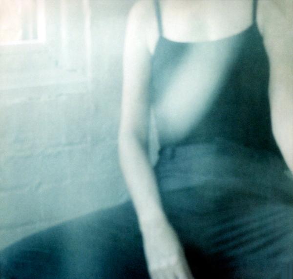 Torso by Virginia Macdonald