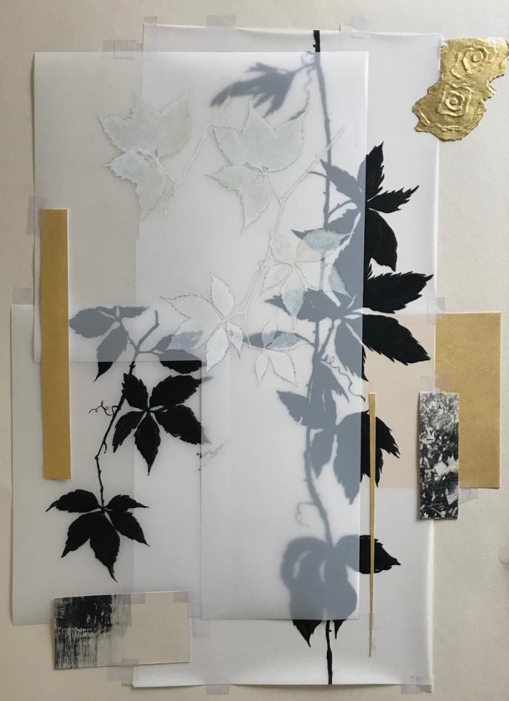 Botanical Folio 2 by Michele Woodey