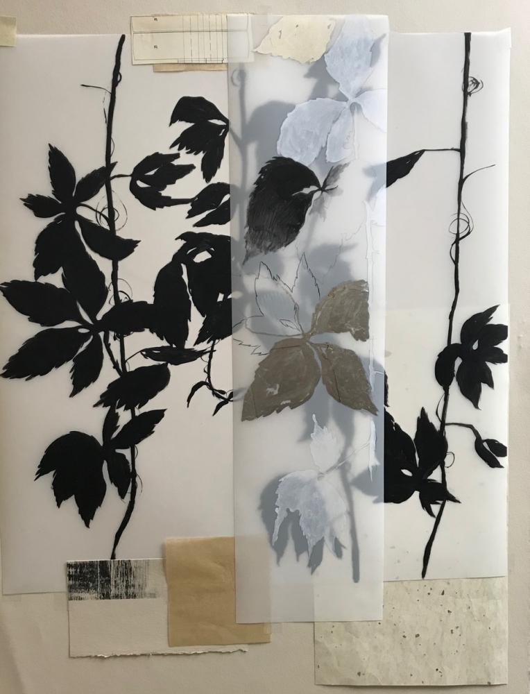 Botanical Folio1 by Michele Woodey